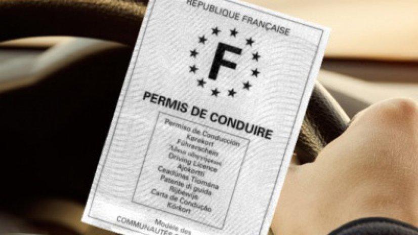Avocat permis blanc Vendée